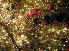 Mercatini di Natale a Cuneo e Provincia Foto